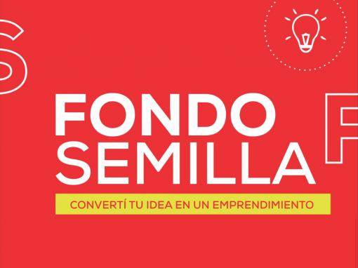 Formulación de proyecto – Fondo Semilla
